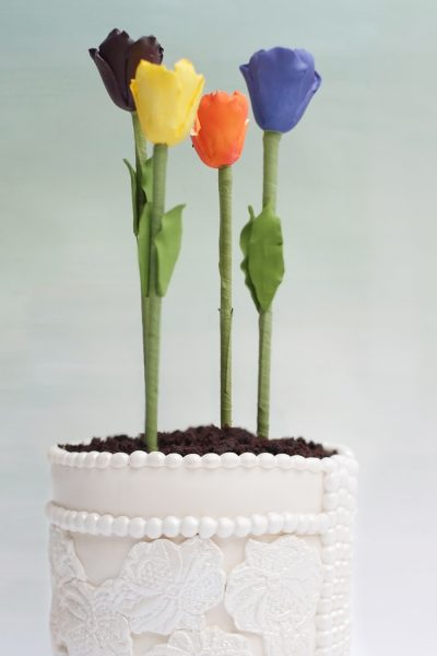 Made in Heaven Flower Pot Cakes