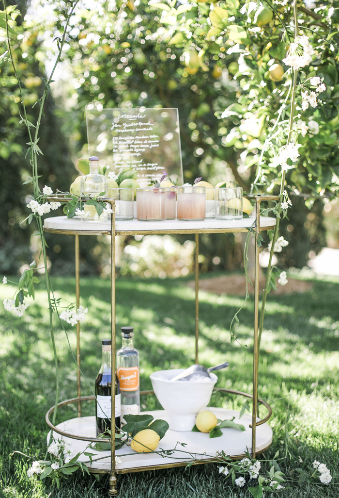 fashion to table spring bar cart