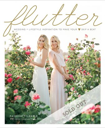 Flutter Magazine Issue No. 8 - Cover by Jose Villa
