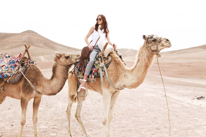riding camels in marrakech honeymoon