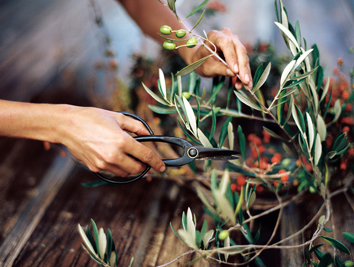 Foraged DIY Wreaths with Katie Chirgotis